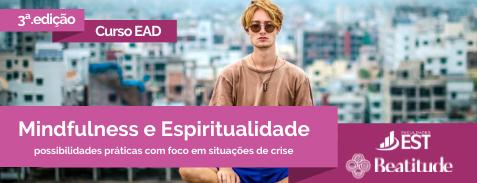 Espiritualidade e Mindfulness: possibilidades práticas com foco em situações de crise (3ª. Edição)