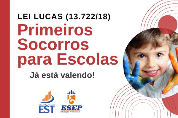 Primeiros Socorros para Escolas - Lei Lucas (13.722/18)