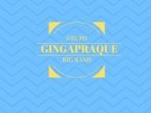 Apresentação do Grupo Gingapraque